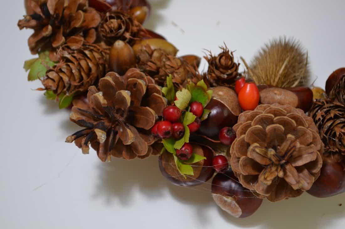 TUTORIAL: Herbstkranz aus Zapfen