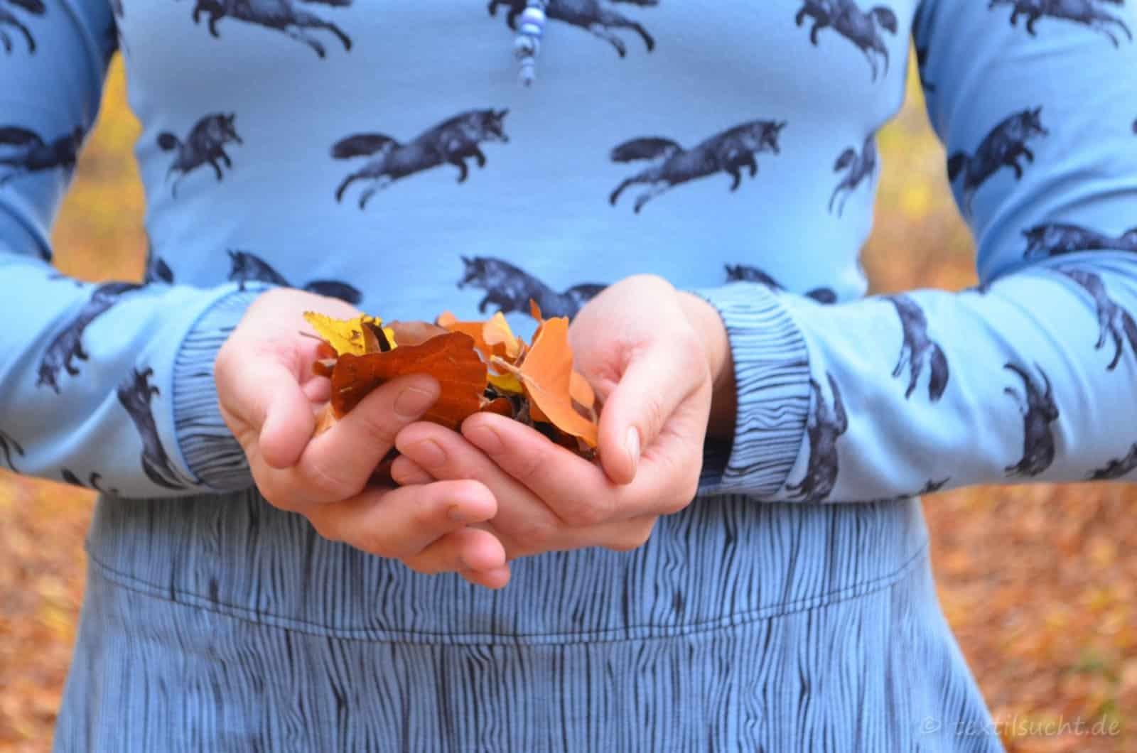 mein Raglankleid Herbstgold