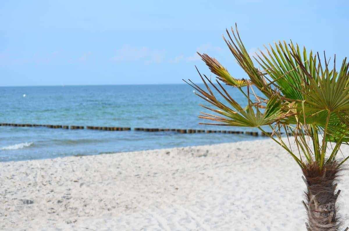 Sommerurlaub mit Kindern – Strandresort Markgrafenheide – Ostsee