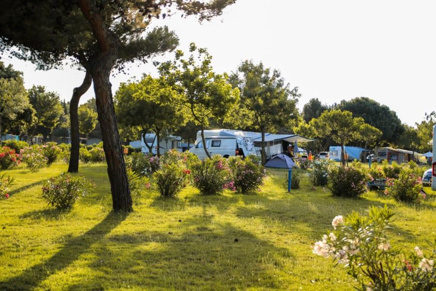 Camping Kroatien: Stellplätze Arena Camping Kazela