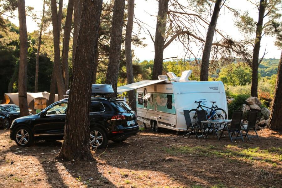 Camp Dvor: Stellplatz im Wald unter Pinien